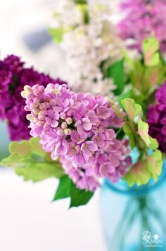 The smell of lilacs in the fresh spring air.