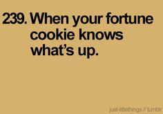 #fortunecookie
