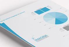 imagina consultores - manual de marca