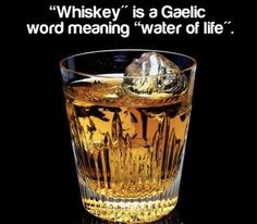 """""""Whiskey"""" is a Gaelic word meaning """"water of life"""". :) I feel an attack of old age coming on. so more Jack Daniels Black Label, please! Whiskey Girl, Cigars And Whiskey, Scotch Whiskey, Irish Whiskey, Bourbon Whiskey, Perth, Crown Royal Drinks, Whiskey Quotes, Gaelic Words"""