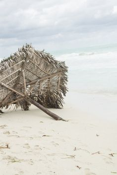 Kuba Travel, Cuba, Trips, Traveling, Tourism, Outdoor Travel, Vacations