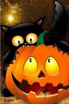 halloween ~ Black cat and a pumpkin blinking at each other