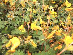 True Happiness..