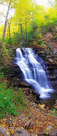 Erie Falls – Ricketts Glen State Park – Red Rock, Pennsylvania