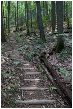 Appalachian Trail #Virginia.. Hike the trail with a friend.