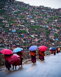 Housing and the Monks in Seda, Tibet,China