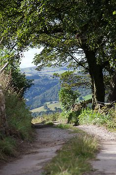 A Yorkshire lane. North England, away from the crowds and the most glorious countryside.  www.bhctours.co.uk