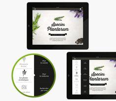 Species-plantarum-application-mobile-botanique-ipad-iphone-celine-delage_2_1240