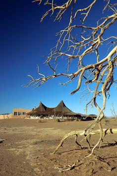Little Kulala, Sossusvlei, Namibia - HeNeedsFood Africa Travel, Us Travel, Land Of The Brave, Provinces Of South Africa, Namibia, Camps, Unity, Places Ive Been, Scenery