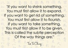 """THE SUBTLE PERCEPTION OF THE WAY THINGS ARE""""-Tao Te Ching ..."""