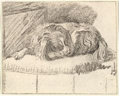 Sleeping Dog   Cornelis Ploos van Amstel