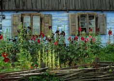 Old cottage in the open-air ethnographic museum in Sierpc, Poland. Country Fences, Old Cottage, Tiny Cabins, Mountain Art, Hollyhock, Eastern Europe, Exterior Colors, Art And Architecture, Countryside