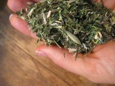 Creating a Kitchen Pharmacy: Traditional Methods of Preserving Homegrown Herbs - drying.