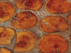 Check out this cool wood flooring from Birger Juell, Ltd. It's made of tree cross-sections and comes in a number of sizes and styles.