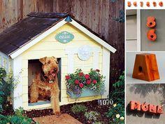 Il garden design a misura di animale domestico