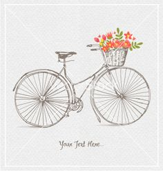 Vintage bicycles vector - by rln on VectorStock®