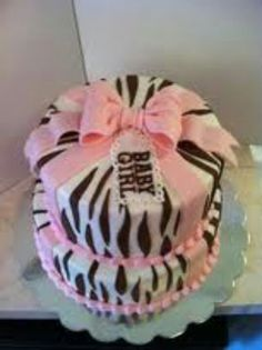 Pink and Brown Zebra