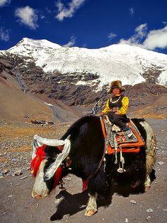 Life in Tibet Why Wait? Call 866-680-3211 #C.Fluker #traveldesigner