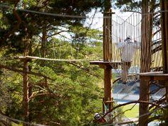 This is my favourite obstacle. Feels almost like walking in the air with 18 meters above the ground!  Lempiesteeni. Tuntuu kuin kävelisi tyhjän päällä. Näkymä alas on melkein esteetön, ja alla on 18 metriä ilmaa!  #SeikkailupuistoHuippu #TreetopAdventureHuippu #Espoo #Leppävaara #Seikkailu