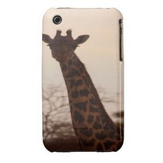 =>Sale on          	Giraffe iPhone 3 Cover           	Giraffe iPhone 3 Cover in each seller & make purchase online for cheap. Choose the best price and best promotion as you thing Secure Checkout you can trust Buy bestDeals          	Giraffe iPhone 3 Cover Here a great deal...Cleck Hot Deals >>> http://www.zazzle.com/giraffe_iphone_3_cover-179096307653099585?rf=238627982471231924&zbar=1&tc=terrest