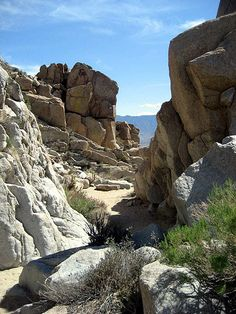 Pictograph Trail to Smuggler's Canyon — a Cool and Easy Anza Borrego Hike