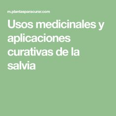 Usos medicinales y aplicaciones curativas de la salvia