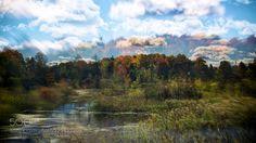 Autumn's Peak Autumn in full swing abstract (ish) double exposure. The way I see it