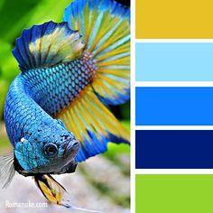 in color balance - undersea Color Schemes Colour Palettes, Nature Color Palette, Blue Colour Palette, Color Combinations, Palette Pantone, Pantone Color, Design Seeds, Color Psychology, Color Balance