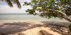 Fiji Fiji, Around The Worlds, Beach, Water, Outdoor, Gripe Water, Outdoors, The Beach, Beaches