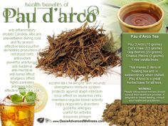 *Health Benefits of Pau d'arco Tea* Anti-inflammatory;  inhibits Candida albicans; preventative during cold and flu season; effective blood purifier; stimulates production of red blood cells; antioxidant properties powerful anti-fungal; anti-bacterial; anti-microbial; anti-tumor effect; analgesic effect; fights parasites; anti-neoplastic; effective against e.coli; accelerates healing of skin wounds; strengthens immune system; protects against staph infection. SEE LINK FOR MORE INFO!