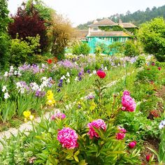 Monet's gardens in Giverny, France.