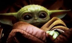 """Images of Baby Yoda from Disney Plus' """"The Mandalorian"""" are back on Giphy after the site briefly pulled them over a copyright mix-up. Yoda Gif, Yoda Meme, Desenho Do Star Wars, Disney Cinema, Find My Dad, Chewbacca, Yoda Images, Yoda Quotes, Wanting A Baby"""