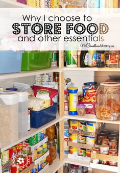 Food Storage -- Do You Need It? Why I store food and other essentials  sc 1 st  Pinterest & Utah Preppers » Discussion Board Archive Starting the New Year ...
