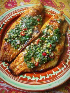 Grilled Catfish with a Fresh Herb Chimichurri - Hispanic Kitchen