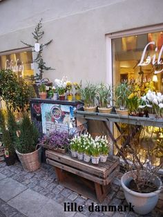 denmark flower shop