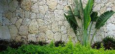 coral stone garden walls