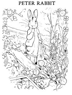 Simple Line Drawing Peter Rabbit