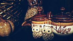My owl salt & pepper shakers, and vintage 60's/70's condiment caddy.