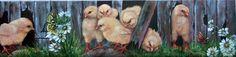 Chicks on the Loose by Shirley Reade