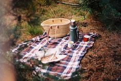 forest picnics / inspire styling / fine art photo by satellite june