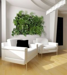 Office Interior Hydroponics (Click Image to see more)