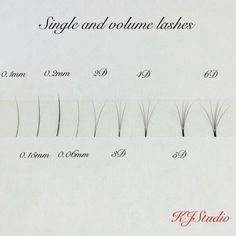single and volume eyelash extensions