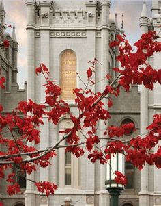 15 Exquisite Images of Temples in Fall