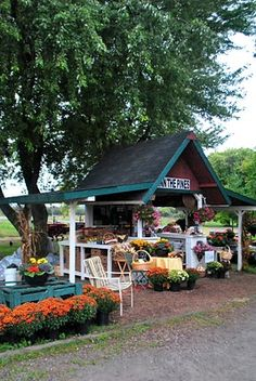 farm stand in the fall - an outside store front