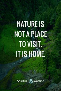 Nature is not a place to visit. It is our home, it is a place of our origins.