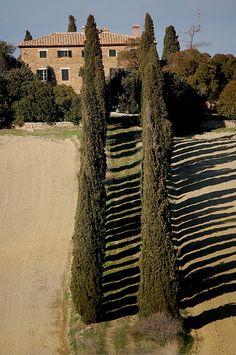 La campagna toscana nei pressi di Pienza, province of Siena, Tuscany