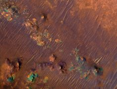 The Nili Fossae region on Mars is incredibly rich in clay deposits, shown here in orange. Organic materials could be preserved in this water-infused clay, which is why scientists are especially interested in this region on Mars. The blue-green regions are rocks rich in pyroxene, which is common in igneous rocks on Earth.