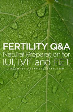 Fertility Q&A: Natural Preparation for IUI, IVF and FET Check out some of the commonly asked questions we receive about using natural . Natural Fertility Info, Pcos Fertility, Female Fertility, Infertility Treatment, Ivf Preparation, Iui Success, Trouble Getting Pregnant, Tips