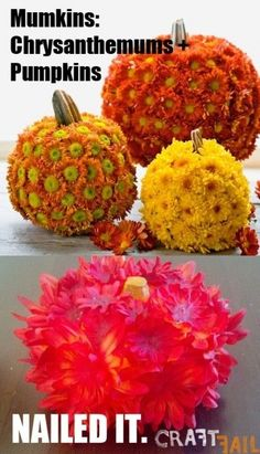 23. Mumkins (Chrysanthemums + Pumpkins) … whatever that is. | Community Post: 31 Horrendous Pinterest Fail Monstrosities