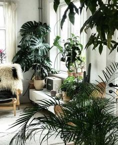 Wonderful Unique Ideas: Artificial Plants Outdoor Home artificial plants living room spaces.Artificial Plants Decoration Home Decor artificial plants outdoor green walls. Vertical Garden Diy, Vertical Gardens, House Plants Decor, Plant Decor, Indoor Garden, Indoor Plants, Tall Plants, Large Plants, Foliage Plants